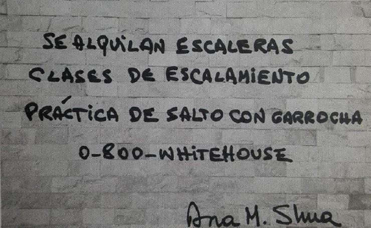 Grafiti de Ana María Shua